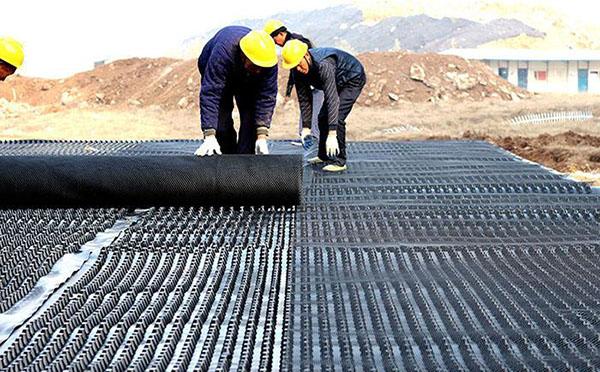 种植屋面排水板案例