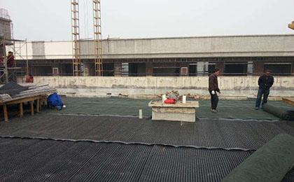 屋顶花园绿化排水板