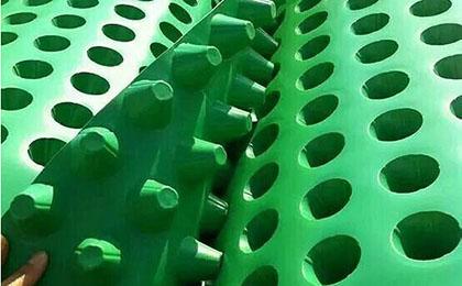 楼顶绿化排水板
