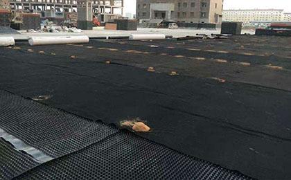 阻根排水板