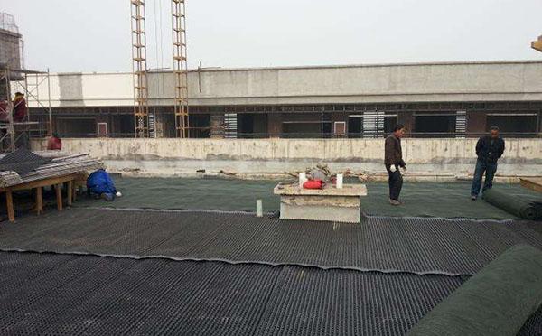屋顶花园绿化排水板案例
