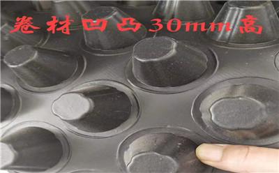 排水板6.jpg