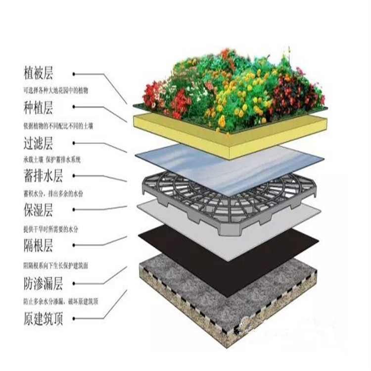 屋顶绿化效果图.jpg